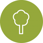 Environmental Impact assessments icon